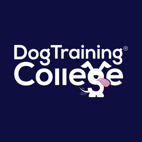 The Dog Training College