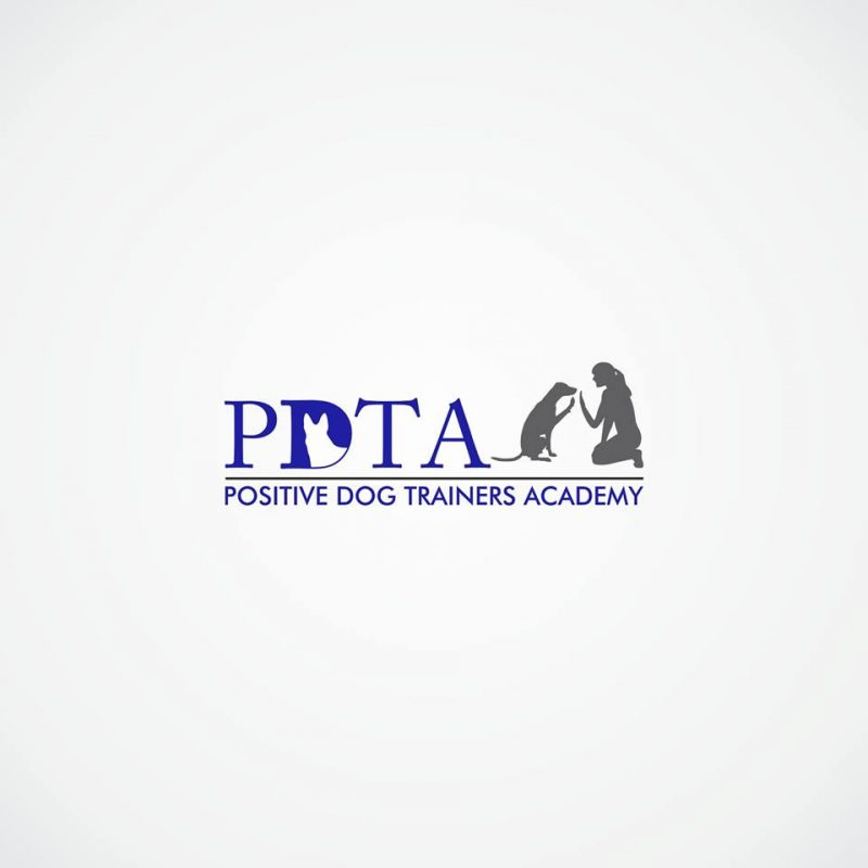 Positive Dog Training Academy